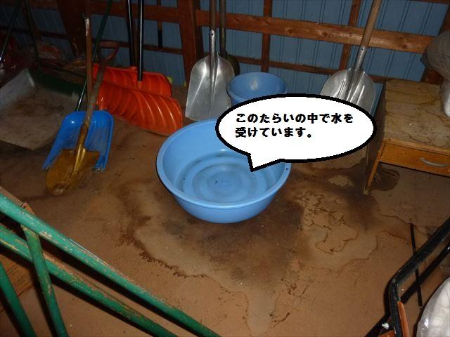 雨漏り現場